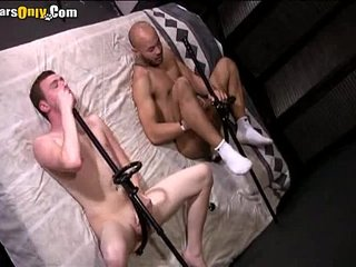 Sexy Stallions Play With Sex Toysnk-8-02 bearsonly 2 part3