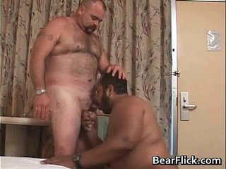 Gay bears giving the big love for a hard gay porno